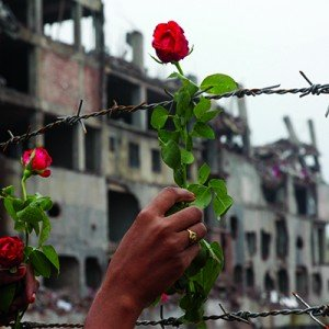 May 24, 2013 - Savar, Bangladesh - A family member of a missing garment worker places roses on the barbed wire fence in tribute to the victims at the site of the April 2013 nine-storey Rana Plaza building collapse on the outskirts of Dhaka. Some 290 unide