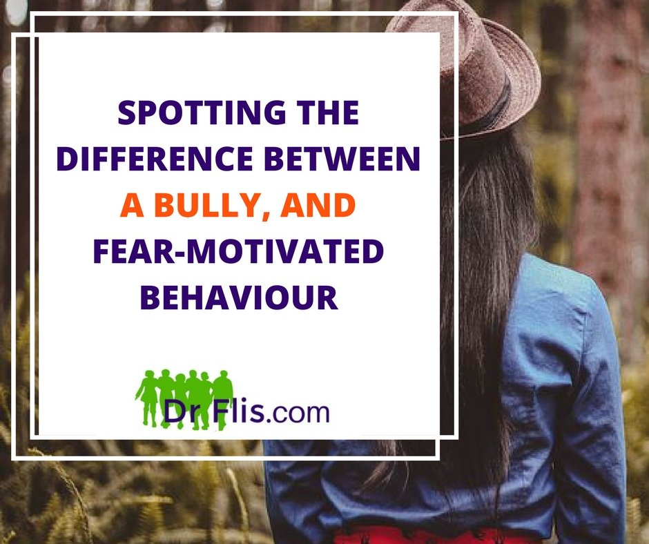 Spotting the difference between a bully & fear-motivated behaviour