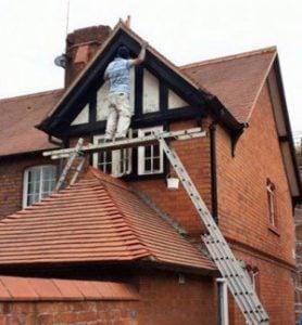 idiots-on-ladders