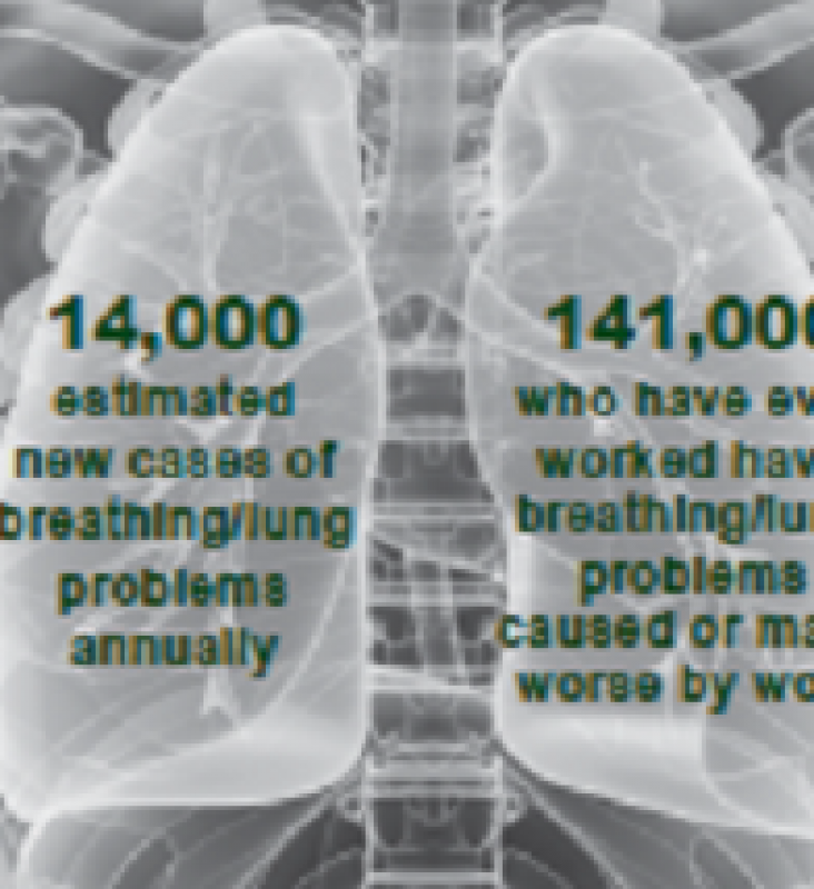 Infographic: monitoring dust exposure